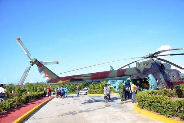 Chiếc máy bay dùng để di tản những chú cá heo.