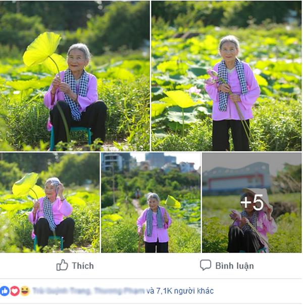 Bộ ảnh chụp cùng hoa sen của cụ bà 90 tuổi thu hút nhiều sự chú ý.
