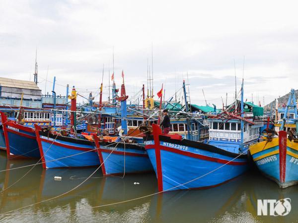 Tỉnh Ninh Thuận đã ra lệnh cấm biển, kêu gọi tàu thuyền vào bờ. (Ảnh: Báo Ninh Thuận)