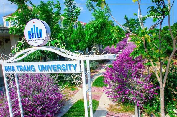 Con đường màu tím nằm trong khuôn viên Đại học Nha Trang khiến nhiều thế hệ sinh viên thích thú.