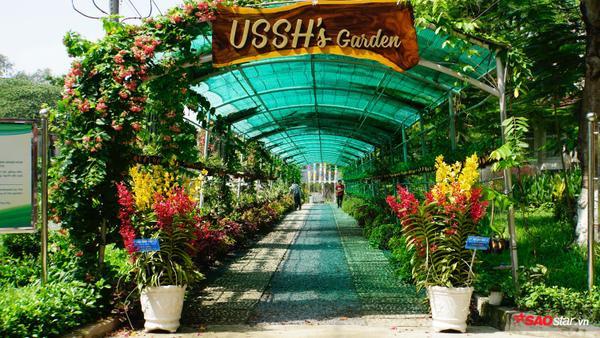 """Khu vườn mới toanh mang tên USSH's Garden """"tọa lạc"""" tại khuôn viên trường Đại học Khoa học Xã hội và Nhân văn TP.HCM"""