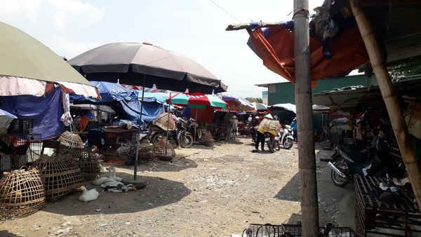 Khu chợ Mường Thanh nơi bà Hiền thi thoảng ngồi bán gà.
