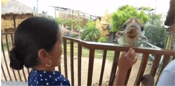 """Bà Tân """"vê-lốc"""" nghỉ nấu ăn, cùngHưng vlog đi chơi công viên"""