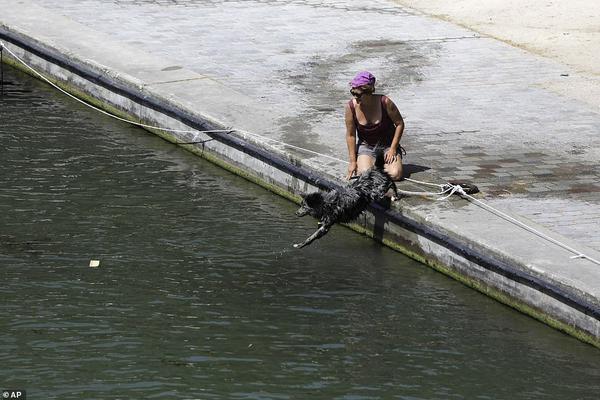 Một chú chó nhảy xuống kênh đào Canal de l'Ourcq ở Paris hôm 28/6. Các trường học phun nước làm mát cho trẻ em và các viện dưỡng lão đang trang bị cho người già cảm biến hydrat hóa (xác định độ ẩm của da).Khoảng 4.000 trường học đã đóng cá»a vì không thể đảm bảo các điều kiện an toàn và chính quyền địa phÆ°Æ¡ng hủy nhiều lễ hội cuối năm học do thời tiết nắng nóng khắc nghiệt.Ít nhất hai trường hợp tá» vong liên quan đến sóng nhiệt Sahara đã được báo cáo ở Tây Ban Nha và 4 trường hợp khác tại Pháp.