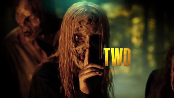 The Walking Dead 10: Michonne tử chiến với nhóm xác sống giữa biển lửa ảnh 2