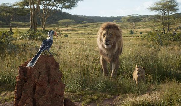 The Lion King 2019: Hành trình bi tráng và chân thực bật nhất ảnh 5