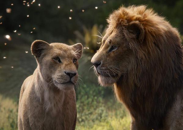The Lion King 2019: Hành trình bi tráng và chân thực bật nhất ảnh 2