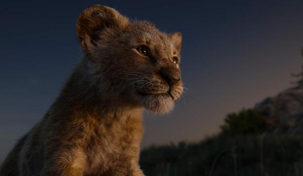 The Lion King 2019: Hành trình bi tráng và chân thực bật nhất ảnh 4