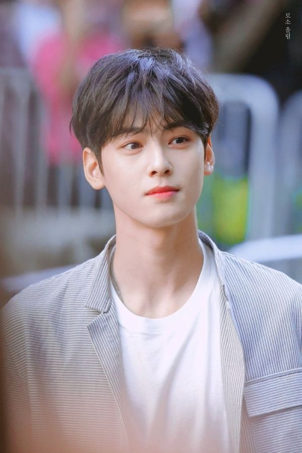 Từ những ngày đầu debut nam idol đã thu về cho mình một số lượng lớn người hâm mộ nhờ khuôn mặt đẹp được cho là 'nghìn năm có một'