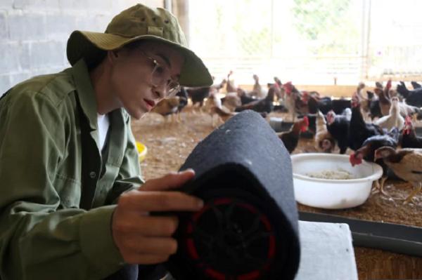 """Cựu sinh viên Đại học Nha Trang Lê Thị Thanh Thu từ chối công việc """"an nhàn"""" để mở một trang trại nuôi gà, kiếm trăm triệu mỗi tháng."""
