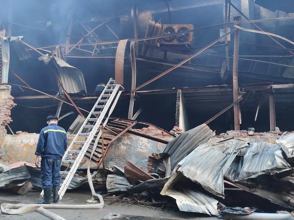 Chuyên gia lên tiếng cảnh báo vì sao nên cấm ăn thực phẩm nuôi trồng trong 1km sau vụ cháy nhà máy phích nước Rạng Đông? ảnh 0