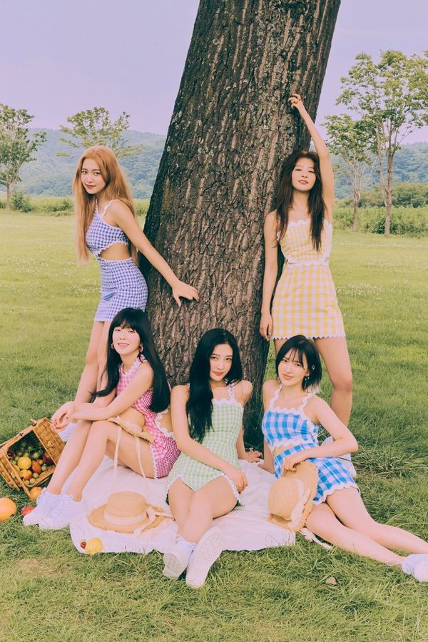 Bộ ảnh quảng bá cho Reve Festival: DAY2 của Red Velvet từng bị tố cáo đã đạo nhái trang phục của một thương hiệu thời trang nổi tiếng.