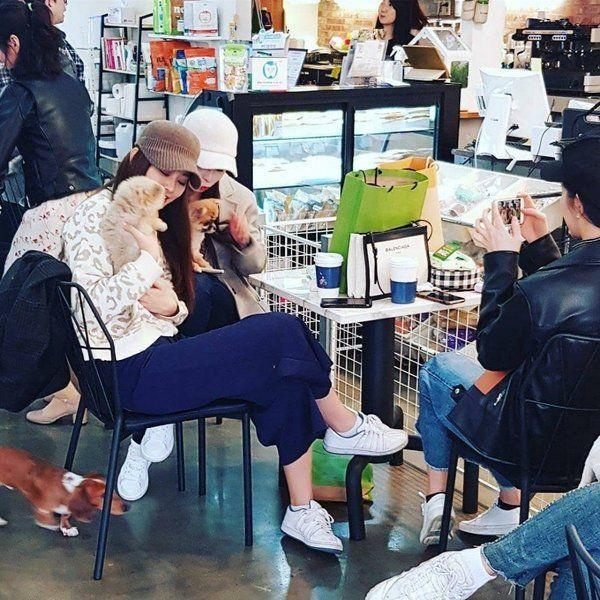 Cả 3 thường xuyên hẹn hò đi cà phê cùng nhau giữa lịch trình bận rộn