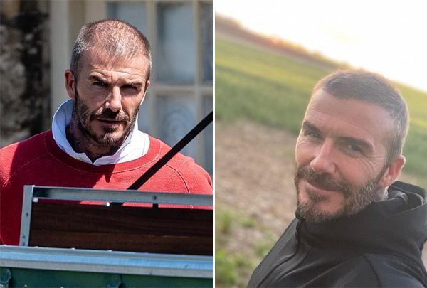 Tuy nhiên một tuần sau, khi chia sẻ video chạy buổi sáng ở cánh đồng hoa gần nông trang, Becks lại gây chú ý vì đầu đã đầy tóc trở lại.