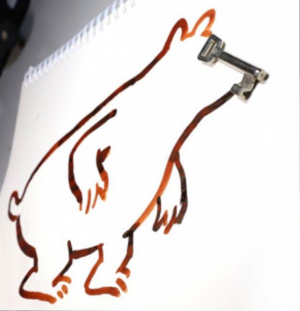 """một con gấu với chiếc mũi """"chìa khóa"""""""