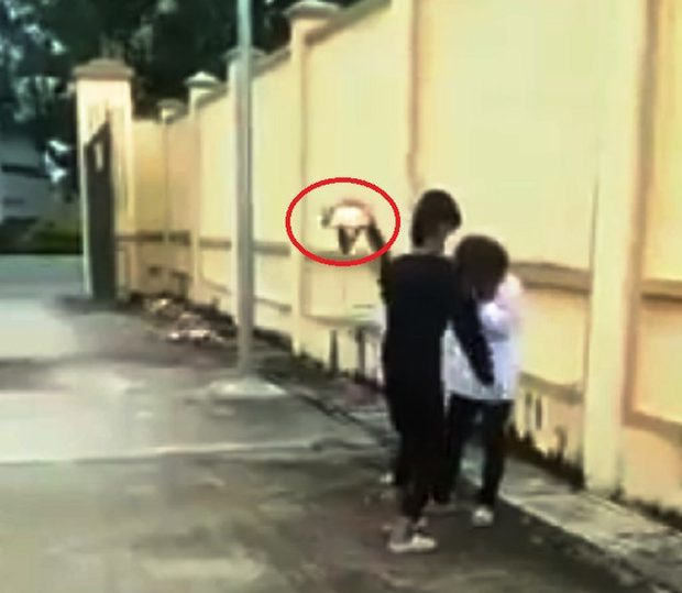 Nữ sinh bị bạn hàng xóm đánh tới tấp vào đầu. Ảnh cắt từ clip