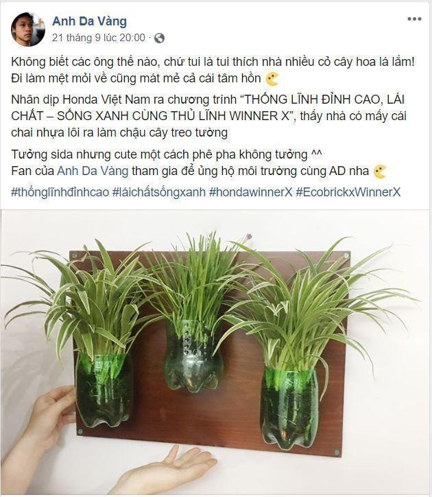 Page Anh Da Vàng hướng dẫn trồng cây bằng chai nhựa