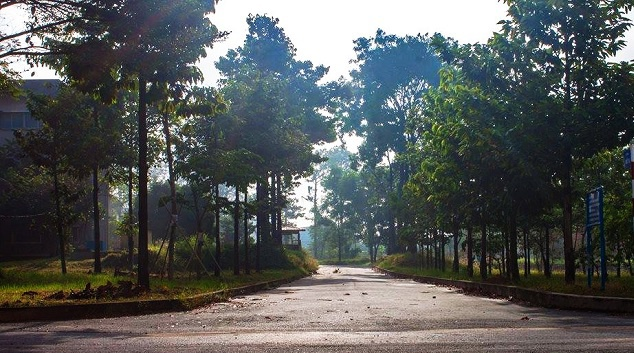 """Con đường dẫn lối đi tắt từ Đại học nông lâm TP.HCM qua bên làng Đại học, nơi nữ sinh O. gặp kẻ """"biến thái""""."""