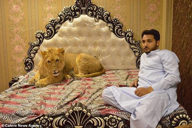 Babbar có giường cho riêng mình.