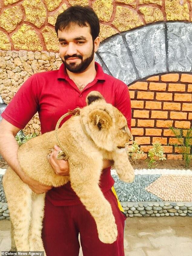 Anh Chaudhary nuôi Babbar khi nó mới 2 tháng tuổi.