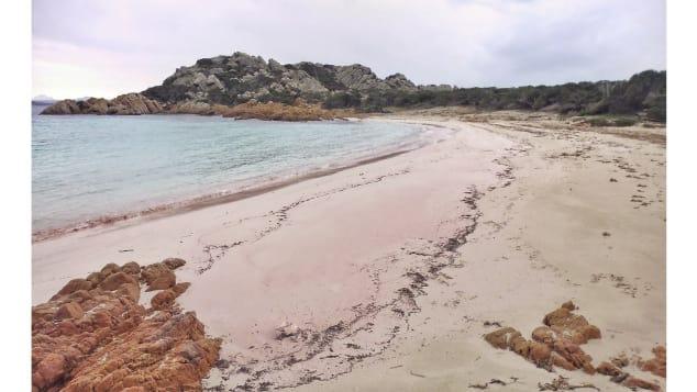 Bãi cát màu hồng tuyệt đẹp trên bờ biển Budelli.