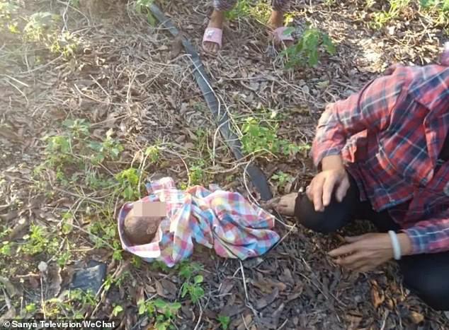 Bé gái sơ sinh còn nguyên dây rốn nằm giữa vườn.