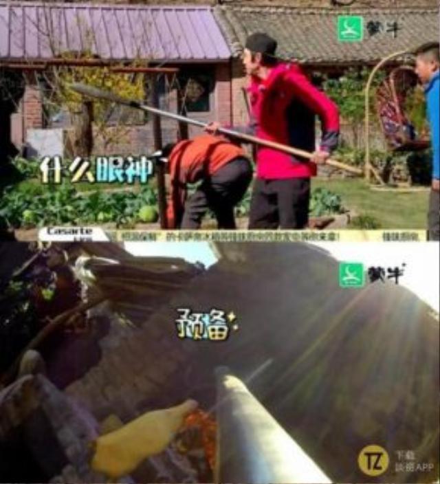 Hồi năm 2015, anh tham gia ghi hình 12 Đạo phong vị cùng Tạ Đình Phong. Nhiệm vụ của Vỹ Đình đơn giản là cầm gậy đưa con vịt nướng đang treo xuống.