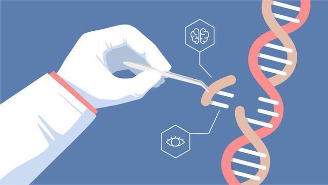 """Các nhà khoa học khác đã tố cáo He Jiankui đang sử dụng CRISPR một cách rất """"nghiệp dư."""