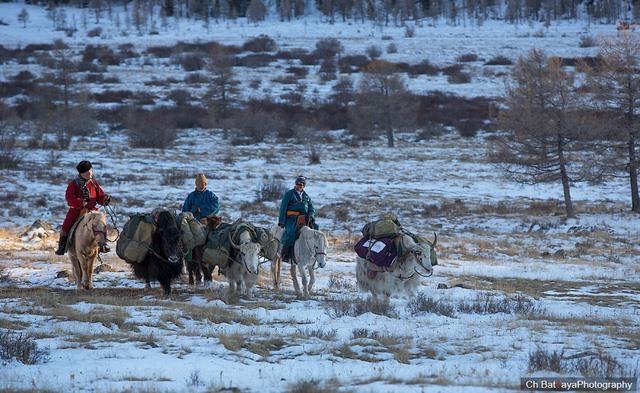 Tuyết phủ kín khắp mọi nơi trên đất nước Mông Cổ khi bước vào mùa đông. Ảnh minh họa.