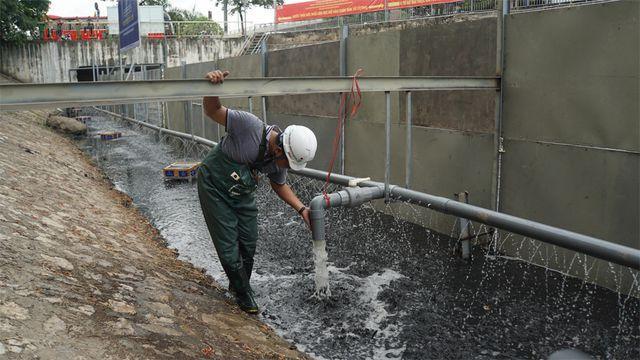 Bên trong rào quây, các chuyên gia đặt 4 tấm vật liệu Bioreactor. Nước nano liên tục bơm vào khu vực để tạo dòng chảy lưu thông.