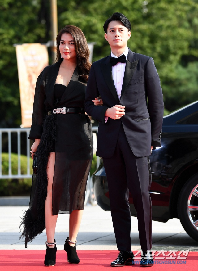 Thảm đỏ Seoul International Drama Awards 2019: Trương Ngọc Ánh  Anh Dũng đọ sắc Jang Nara và Ji Chang Wook ảnh 5