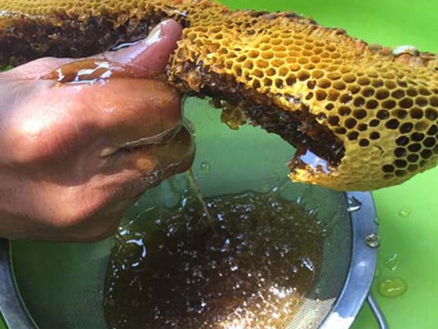 Bù lại cho số lượng đàn ít, nhỏ và rất khó để tìm thấy thì mật của ong rú khá hiếm và hiện được bán với giá không dưới 3 triệu đồng/lít, gấp 4-6 lần so với ong ruồi, nhưng không dễ để mua.
