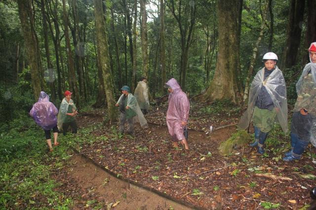 Người dân xã Măng Ri vượt núi lên đỉnh Ngọc Linh săn loại chuột quý tộc