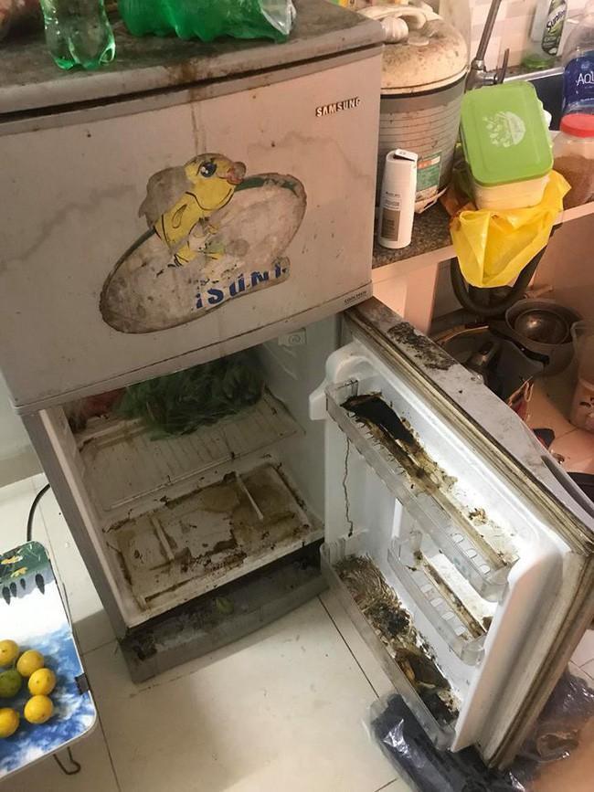 Cả thế giới vào mà xem ngăn tủ lạnh sắp mọc rêu đến nơi rồi.