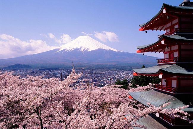7 công ty du lịch của Việt Nam bị đình chỉ tư cách đại diện xin visa Nhật Bản, trong đó có cả Công ty Du lịch Vietravel. Ảnh minh họa