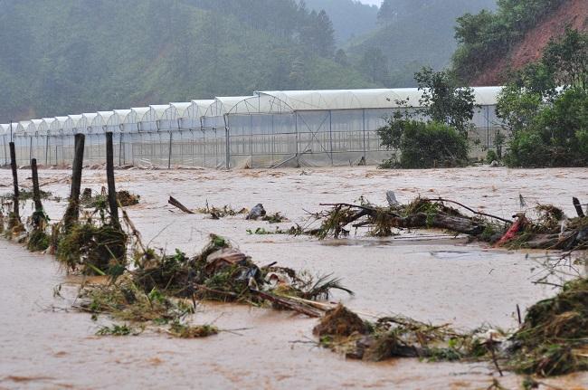 Trận mưa lũ gây thiệt hại nặng nề. Ảnh: Công an nhân dân