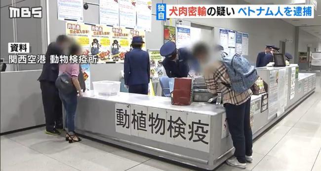 Khu vực kiểm tra động thực vật tại sân bay Kansai (Nguồn : MBS)