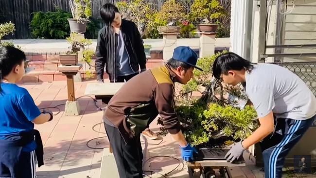 Tiện thể lúc 3 cậu con traiđang nghỉ học, Bằng Kiều đã hướng dẫn và cho các con làm vườn