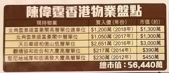 Dù là phú nhị đại nhưng Trần Vỹ Đình vẫn tự lực cánh sinh: Trong 8 năm phát triển sự nghiệp mua được 5 căn nhà ở Hong Kong ảnh 7