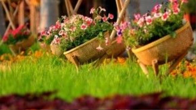 Những chiếc thúng đựng các loài hoa.