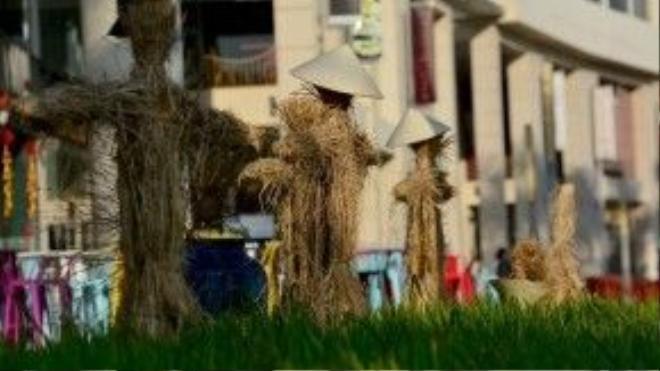 Bù nhìn rơm, hình ảnh thường xuất hiện khắp các cánh đồng lúa của Việt Nam.