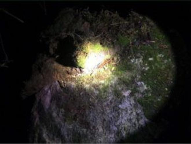 Phiến đá rộng, có lớp rêu rất dày được lật lên nguyên tảng. Một nhân viên trong đội cứu hộ cho biết, rất có thể phượt thủ người Anh đã lấy rêu đắp lên người để giữ ấm cơ thể khi thời tiết tại Fansipan lúc nửa đêm quá lạnh