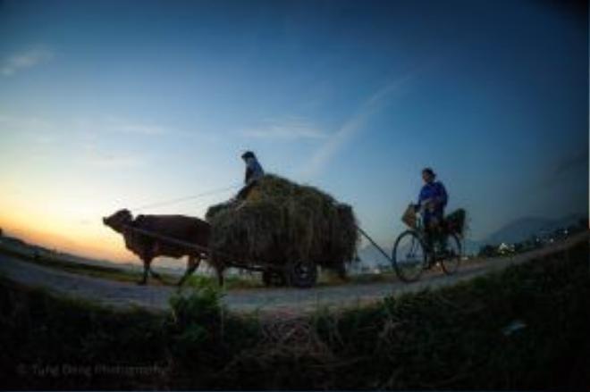 Cách thủ đô Hà Nội chỉ khoảng 45 phút đi xe, cuộc sống ở xã Kim Long, huyện Tam Dương, tỉnh Vĩnh Phúc vẫn giữ được những nét đẹp mộc mạc, giữ đậm chất làng quê Bắc Bộ xưa.