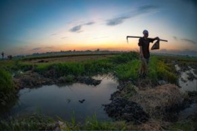 Người dân xã Kim Long đa phần là làm nông nghiệp, cuộc sống quanh năm gắn liền với cánh đồng.