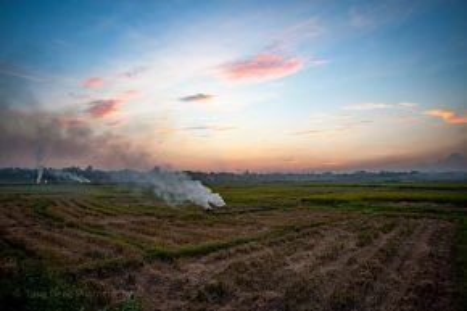 Sau khi lúa được gặt xong, cánh đồng còn lại những gốc rạ khô. Theo cách truyền thống, người dân đốt rạ - vừa sạch cánh đồng, diệt mầm mống sâu bệnh, vừa là nguồn phân bón đầy dinh dưỡng cho vụ mùa tiếp theo. Các cột khói cứ bay cao vút, lan tỏa khắp không gian hòa quyện vào cả bầu trời.