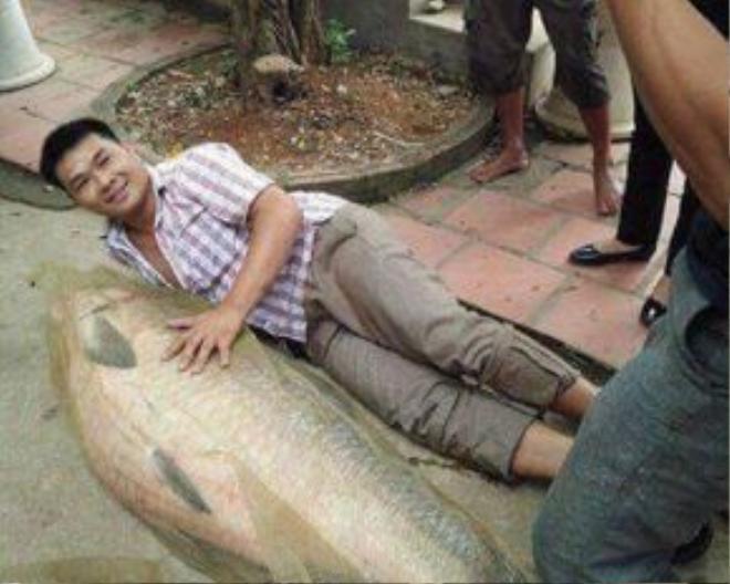 Mọi người thích thú ghi lại hình ảnh với con cá khủng vừa bắt được.