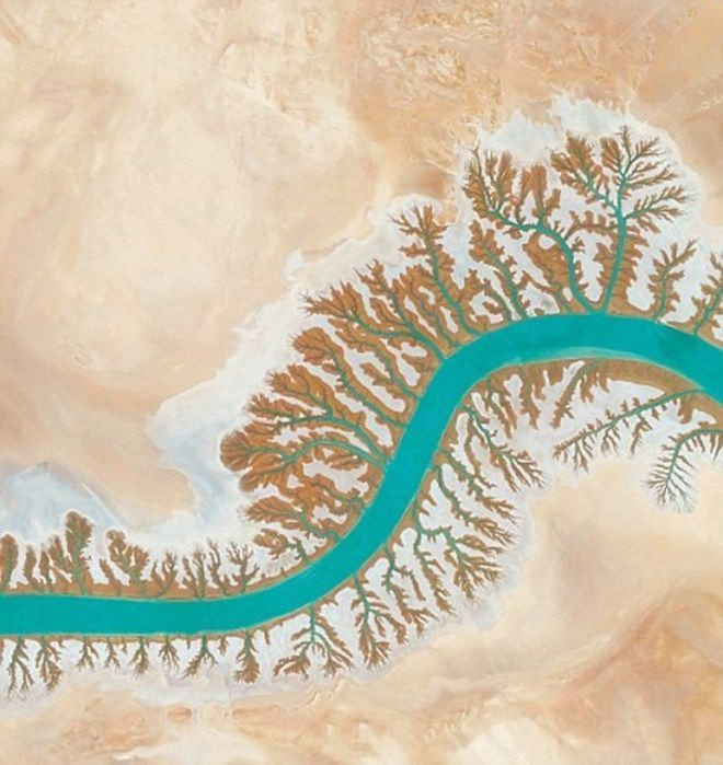 Hệ thống thoát nước quanh Shadegan Lagoon, Musa Bay ở Iran trông như những nhánh cây.