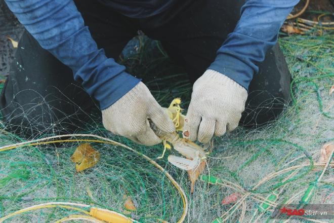 Lao đao nghề biển và cái tình của người chài lưới ảnh 7