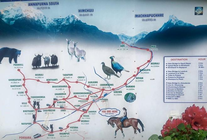 Bản đồ chi tiết cung PoonHill – Annapurna Base Camp.