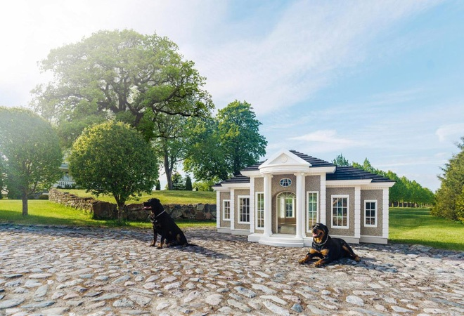 Những ngôi nhà khang trang như thế này sẽ đem lại cảm giác thoải mái cho loài chó.